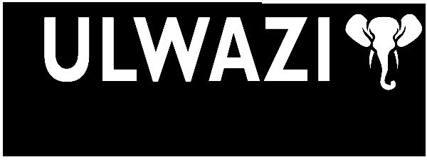 Ndlovu Ulwazi Consulting